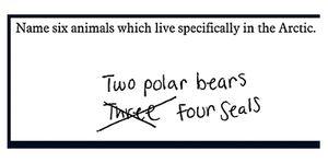 Animals in Arctic